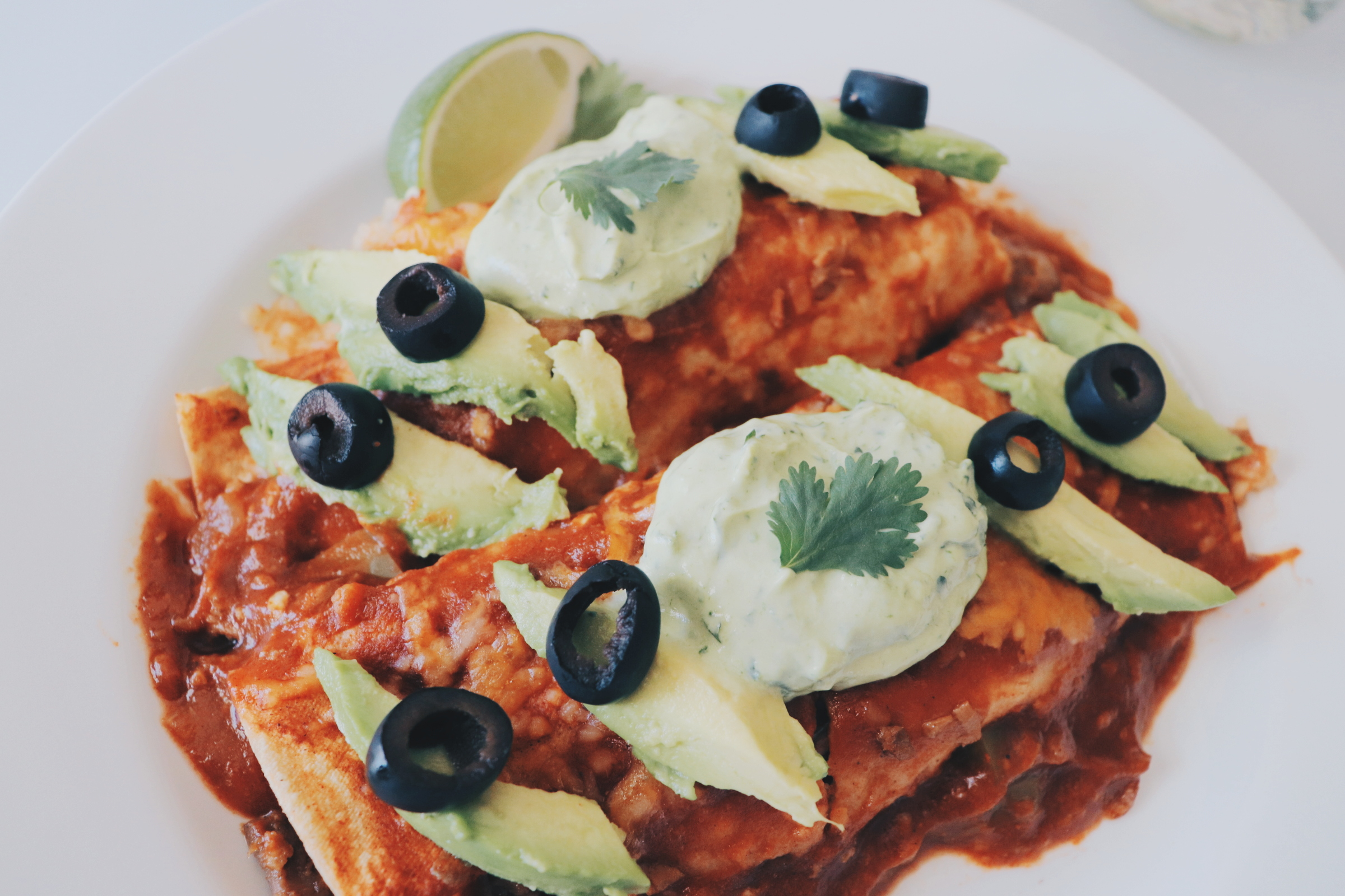 healthy vegetarian enchilada recipe